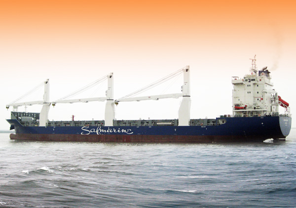 Multi-purpose Ship Series_Civilian Products_BUSINESS_WUHU SHIPYARD CO., LTD